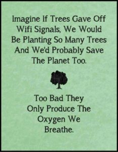 trees-breathing-air-quality