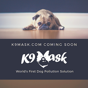 Face Masks To Protect Dogs From Air Pollution Best Air
